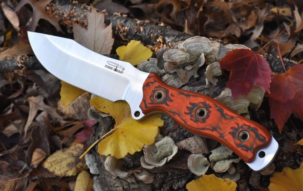 Autumn Leaves With Knife (click to view)