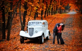 Autumn Park Kiss