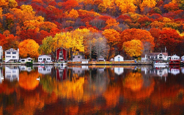 Autumn Reflections (click to view)