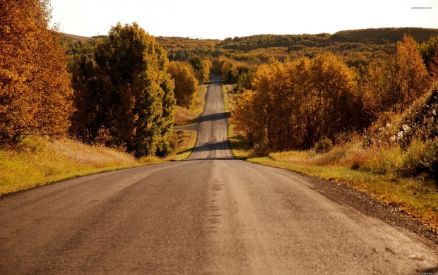 Autumn Rural Road (click to view)
