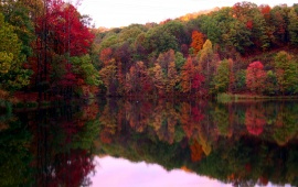 Autumn Trees Lake Reflection