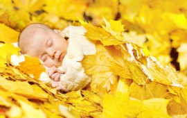 Baby Sleeping In Bright Autumn Leaves