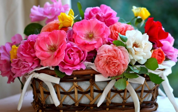 Basket Roses (click to view)