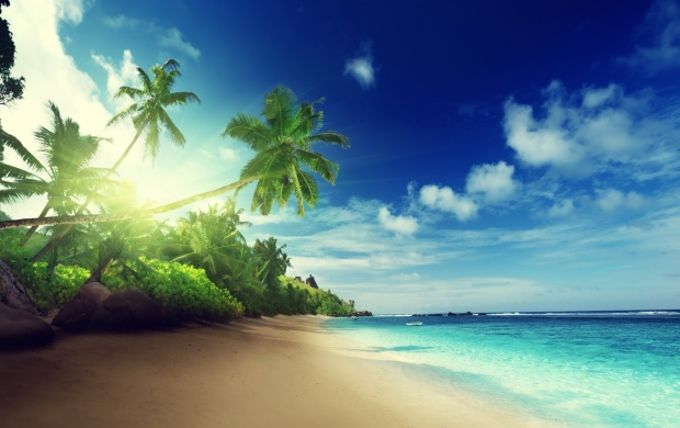 Tropical Paradise Beach Hd Wallpaper For Nexus 7 Screens: Beach In Sunset Time In Seychelles Wallpapers