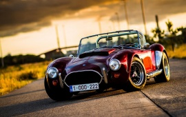 Beautiful Cobra Cars