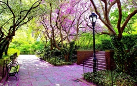 Beautiful Spring Park
