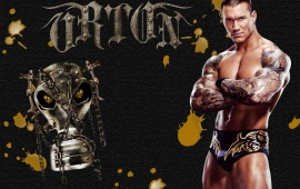 Beautiful Superstar Randy Orton