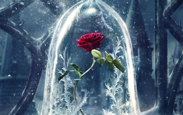 Beauty And The Beast Poster (click to view)