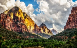 Big Mountains And Green Trees