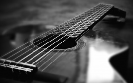 Black And White Guitar Macro