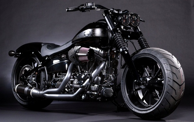 Black Panther Breakout Softail (click to view)