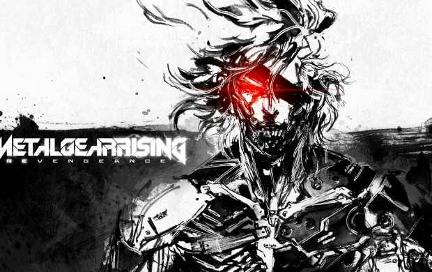 Blade Master Metal Gear Rising Revengeance (click to view)