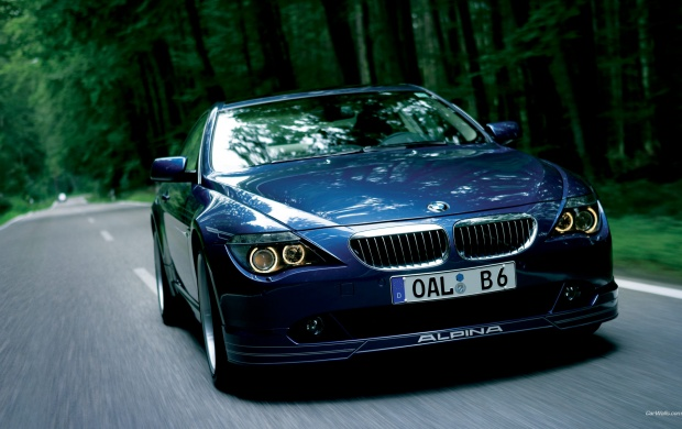 BMW Alpina Front Pose (click to view)