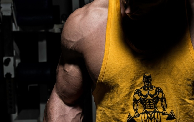 Bodybuilder Muscles (click to view)