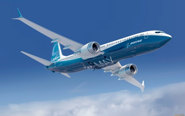 Boeing 737 Max Winglet (click to view)