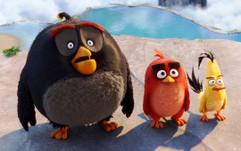 Bomb Red Chuck Angry Birds Movie