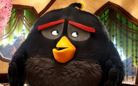 Bomb The Angry Birds Movie