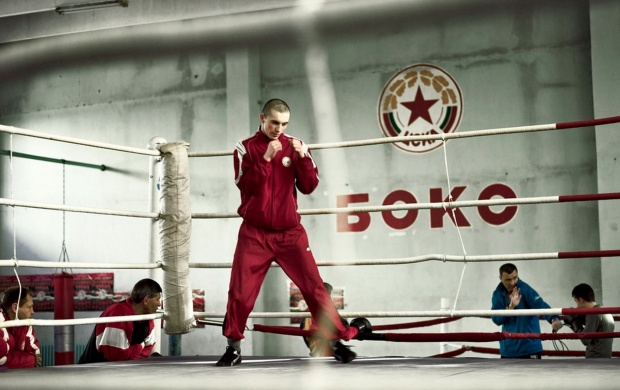 Boxer In Boxing Ring (click to view)