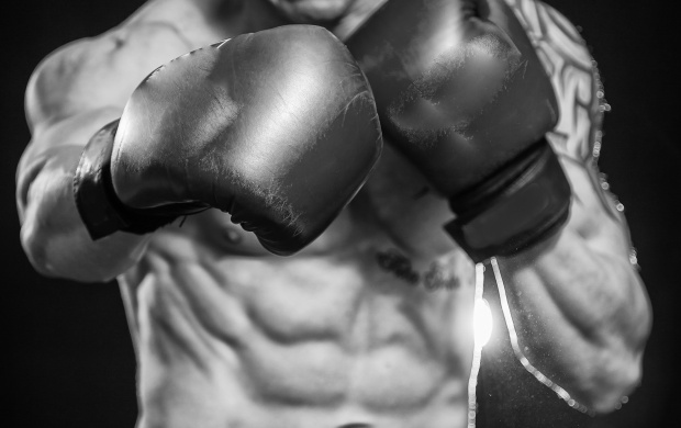 3902 Views Boxing Abs