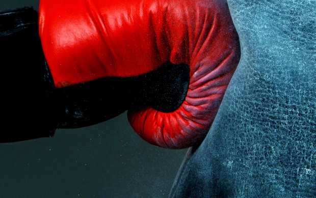 Boxing Gloves Punch (click to view)