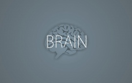 Brain On Gray Background