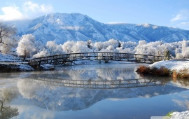 Bridge Reflection in the Winter