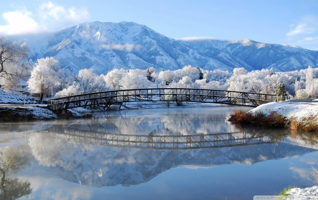 Bridge Reflection in the Winter (click to view)