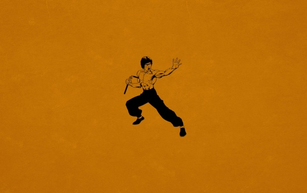 Bruce Lee Kung Fu (click to view)