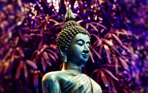 16839 Views Buddha Statue Hawai