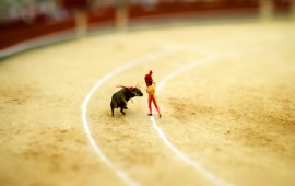 Bull Fighting Miniature Effect