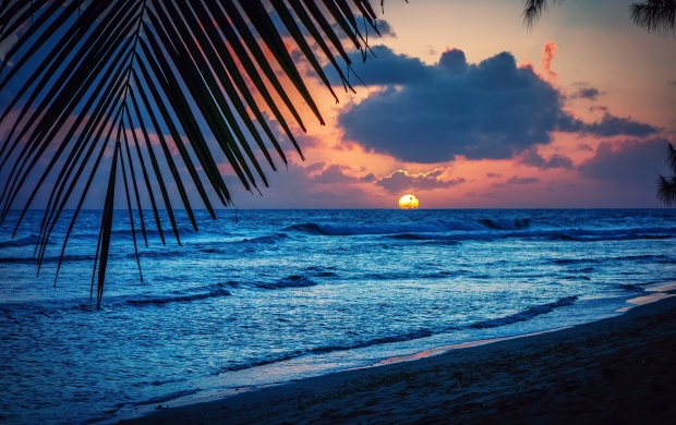 Caribbean Sea Beach Evening (click to view)
