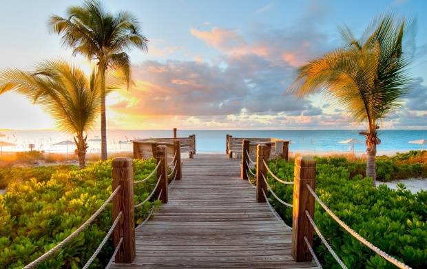 Caribbean Wood Beach (click to view)