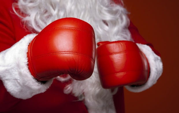 Christmas Santa Claus Boxing Glove (click to view)