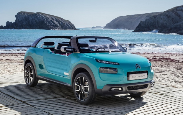 Citroen Cactus M Concept 2015 (click to view)