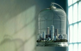 City In Bird Cage