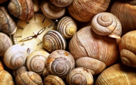 Clock Time Shells