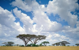 Clouds On The Masai Mara