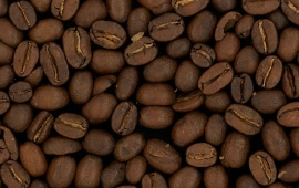 Coffee Grain Brown