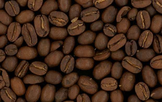 Coffee Grain Brown (click to view)