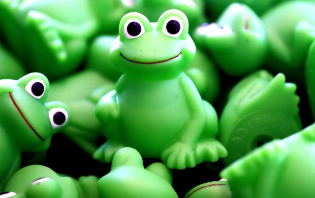 Crazy Frogs (click to view)