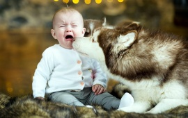 Crying Baby And Dog