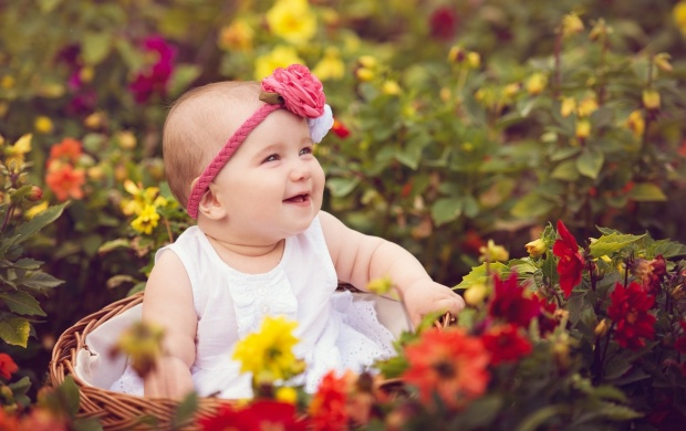 Cute Baby Rose Garden wallpapers