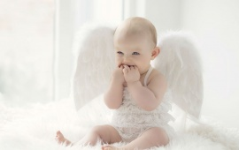 Cute Baby White Wings