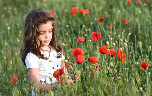 Cute Girl In Poppy Flower Field (click to view)