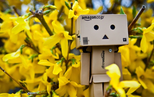 Danbo Spring Time (click to view)