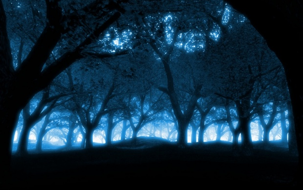 Dark Blue Forest (click to view)