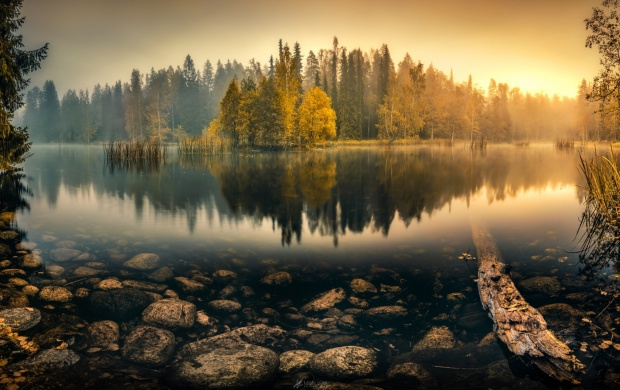 Dawn Autumn Forest Lake (click to view)