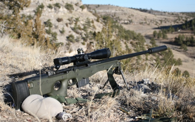 Deadly Dragunov Sniper Rifle (click to view)