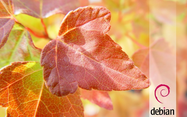 Debian Leaves (click to view)
