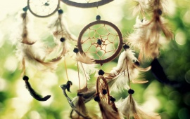 Dreamcatcher White Earrings